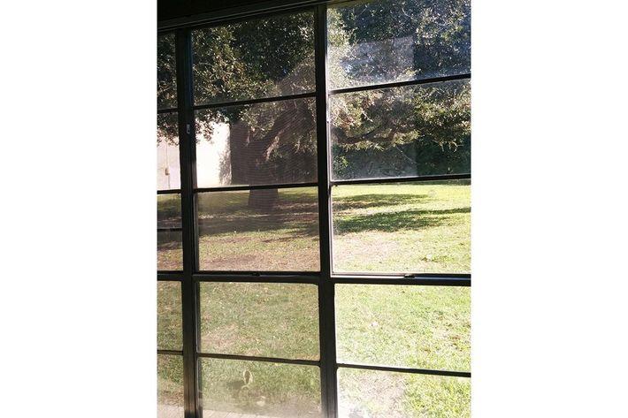 outside window view.jpg