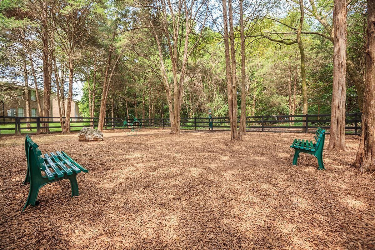 Ample Space to Run at Ashwood Cove in Murfreesboro, TN
