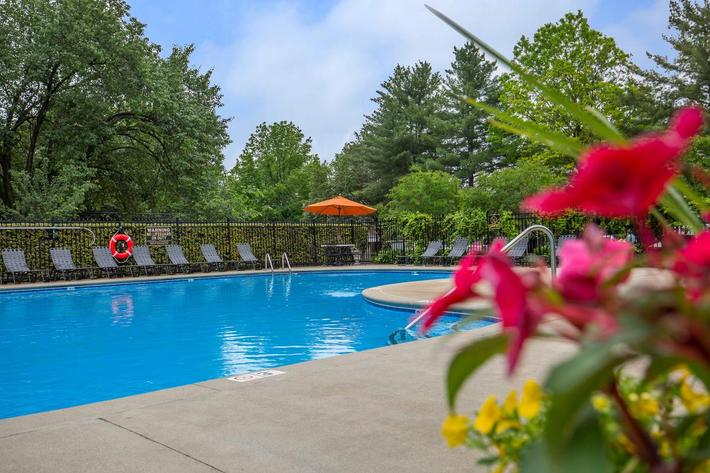 Enjoy the Swimming Pool at Ashwood Cove in Murfreesboro, TN