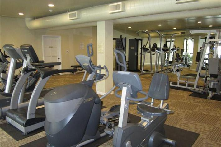 Crystal Tree has a newly remodeled fitness center