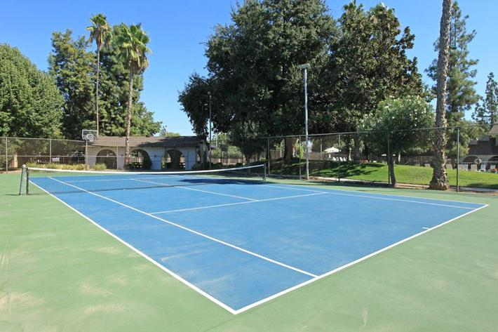 We  have a tennis court here at Crystal Tree