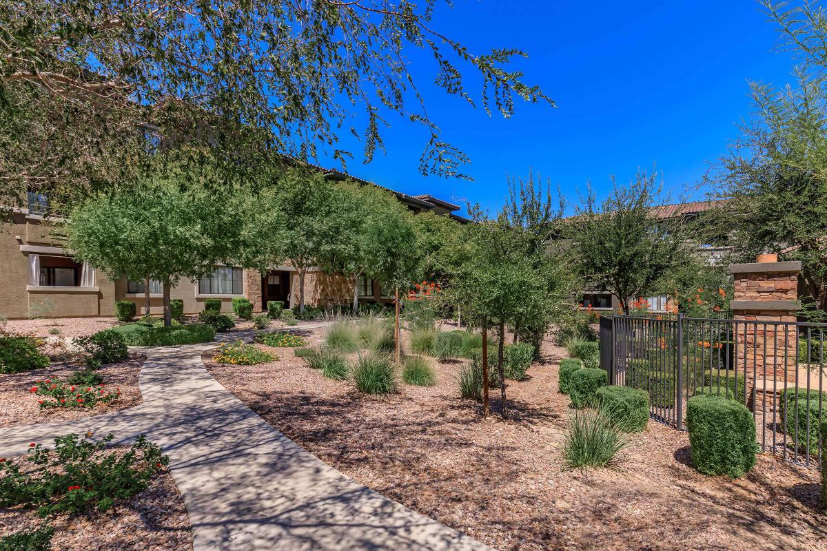 XERISCAPING WITH LOTS OF SHADE