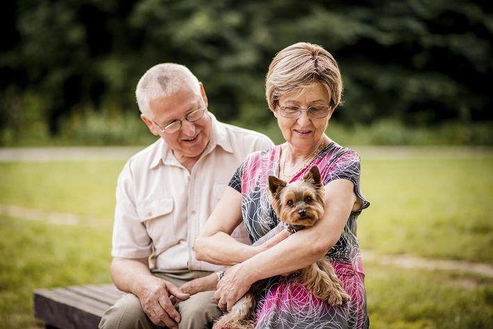Senior couple with dog.jpg