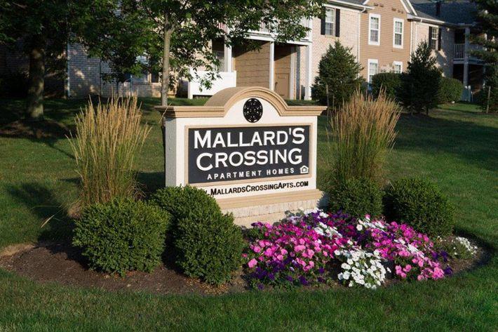 MallardsCrossing Medina, OH sign.jpg