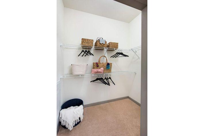 Model Closet 01.jpg