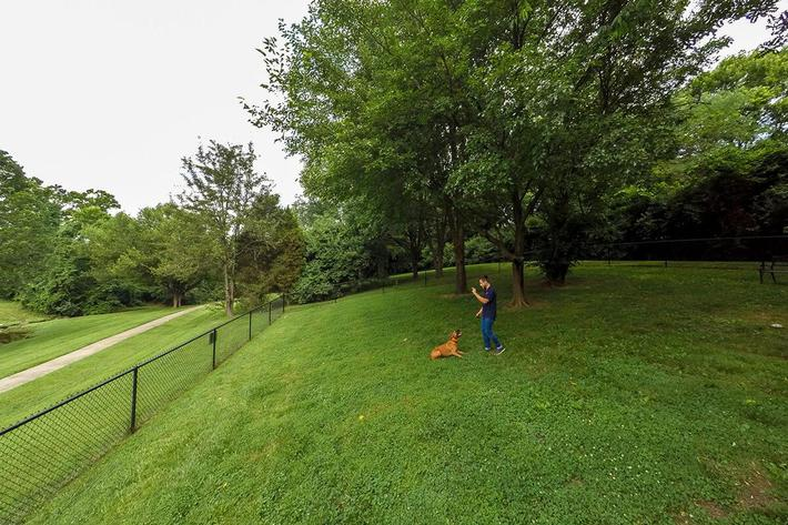 Fenwick Place Apartments in Louisville, KY - Dog Park 01 (2).jpg