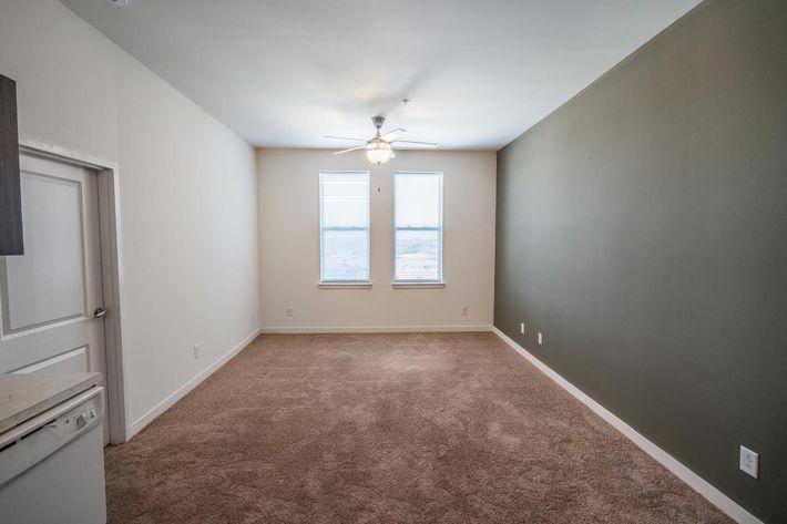 Plush Carpets