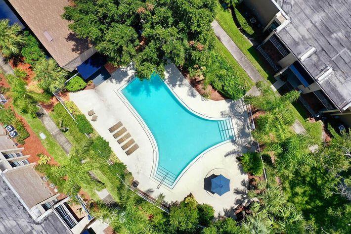seastone-luxury-apartments-tampa-fl-poolbbq-area (1).jpg