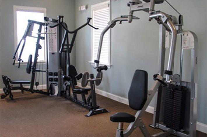 MG Fitness ss.jpg