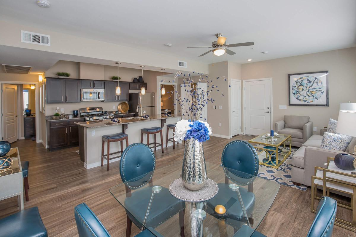 B3 Elegant Features here at The Passage Apartments
