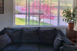 spring-summer view.jpg
