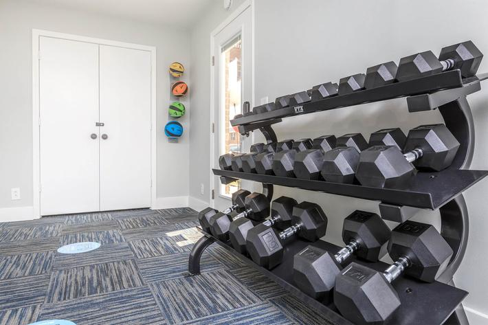 Weight rack with weights