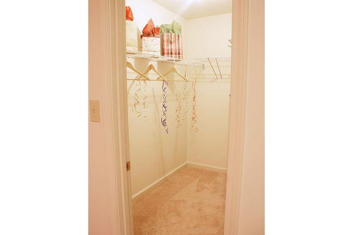 walk-in-closet-summertree-apt[1].jpg