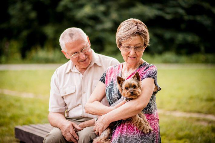Senior couple with dog iStock_84018787_LARGE.jpg