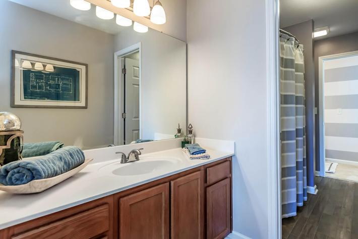 Contemporary Bathroom at Bluff View at Northside Apartments