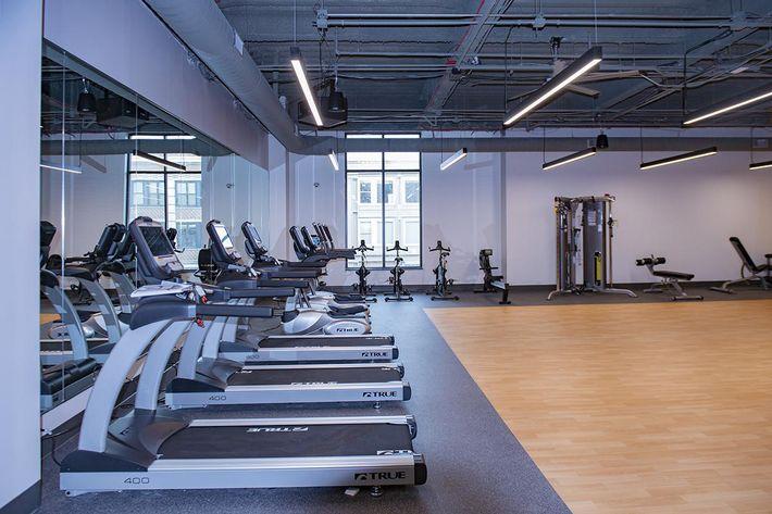 LINC Treadmill 001.jpg