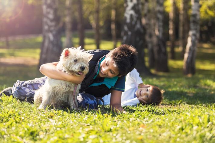 boys with dog - iStock-857097762.jpg