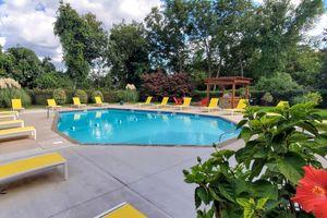 a pool next to a tree