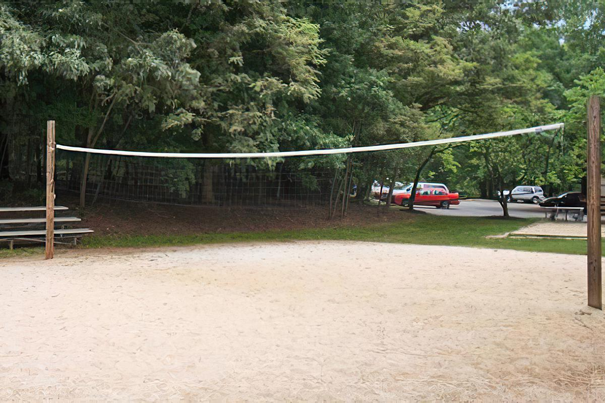 SAND VOLLEYBALL ANYONE?