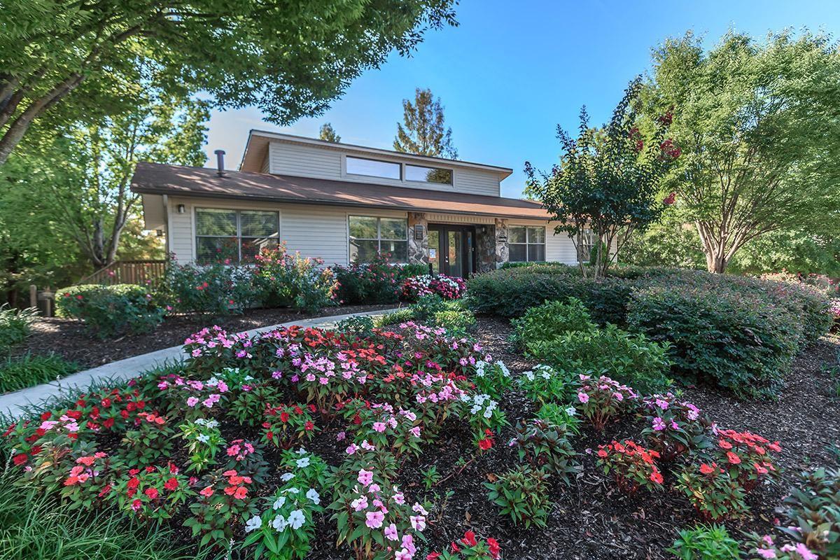 The Laurel Ridge Apartments Beautiful Community Garden in Chattanooga, Tennessee