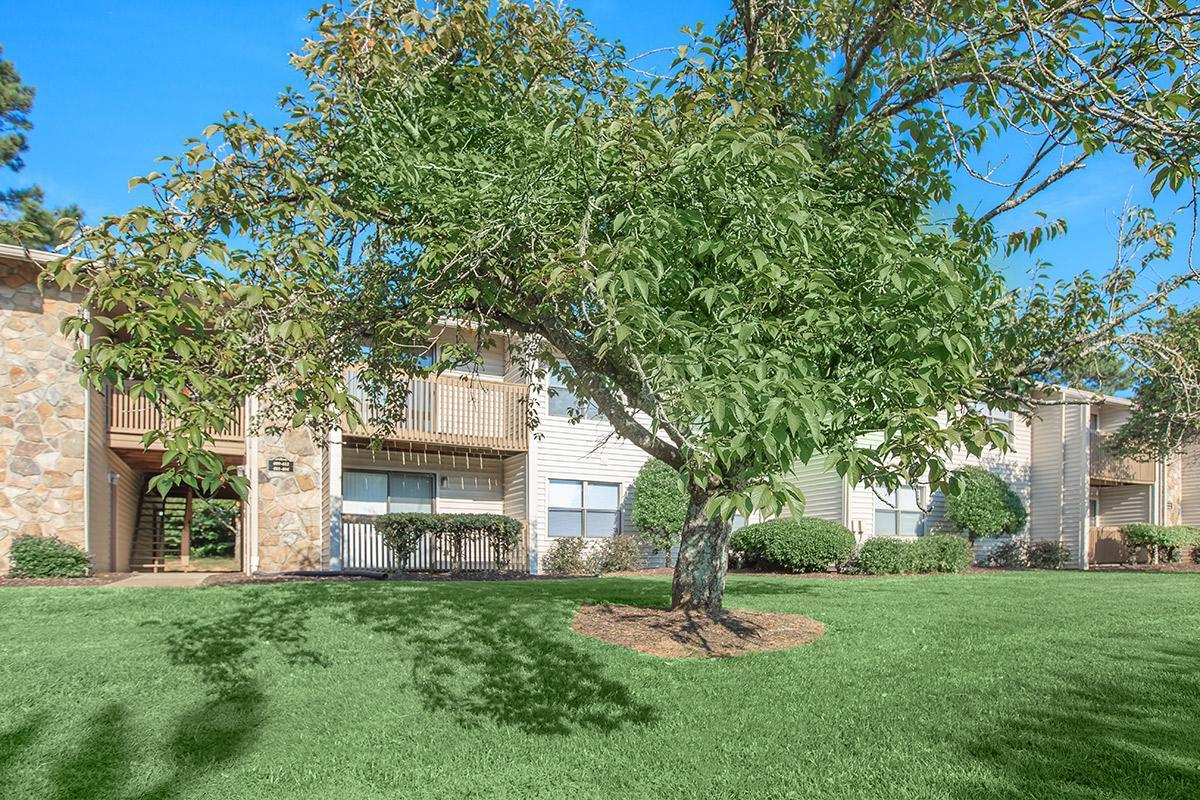Mature Trees for Shade at Laurel Ridge Apartments in Chattanooga, Tennessee