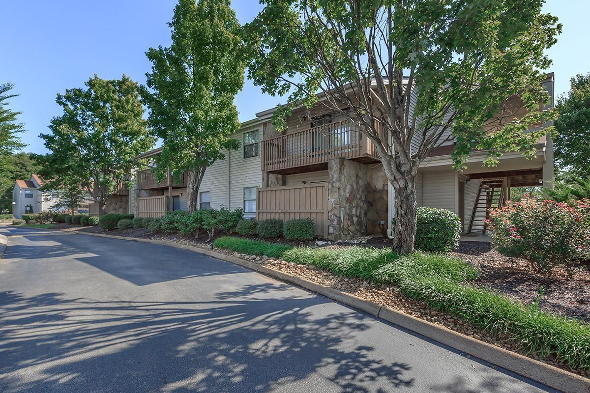 A Tree Lined Street Welcomes You Home to Laurel Ridge Apartments