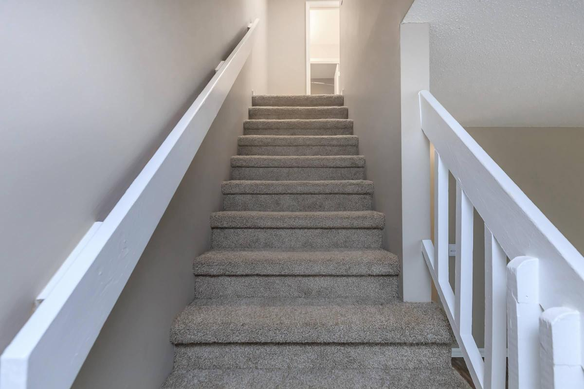 Plush Carpeted Stairs in Chatanooga, Tennessee