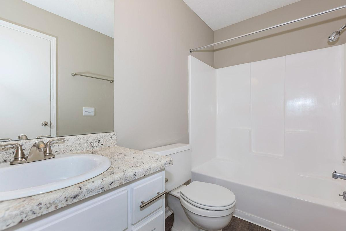 One Modern Bathroom in The Willow at Laurel Ridge Apartments in Chattanooga, TN