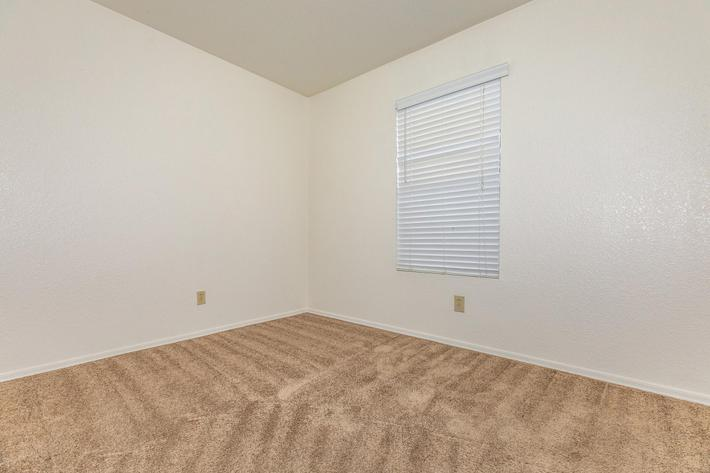 Two bedroom apartment for rent with plush carpeting