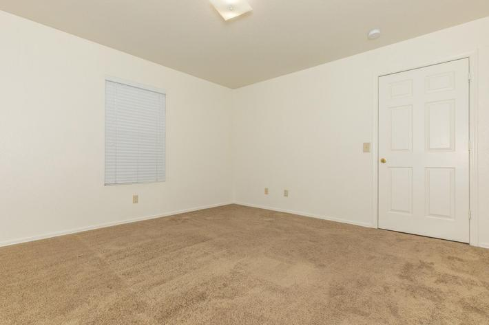 Plush carpeting in three bedroom apartment for rent