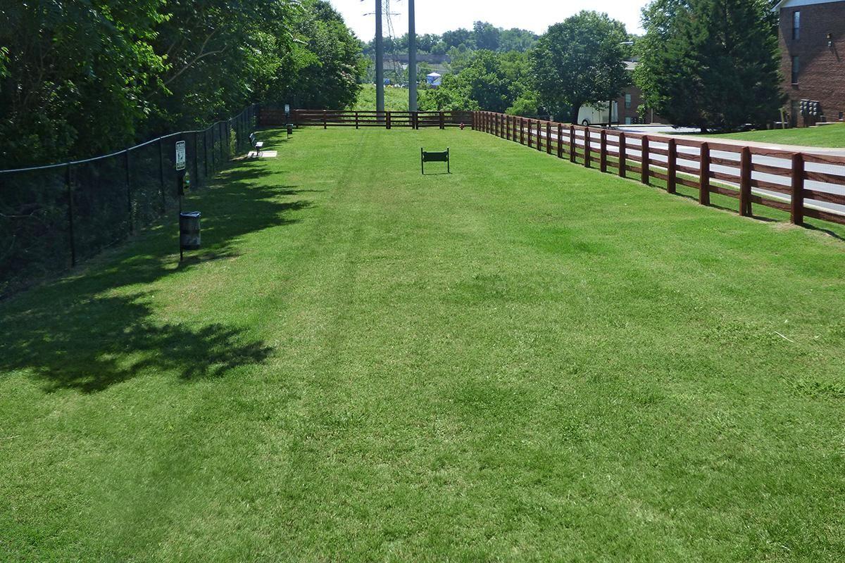 The Knolls Dog Park