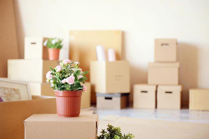 interior-moving boxes.jpg