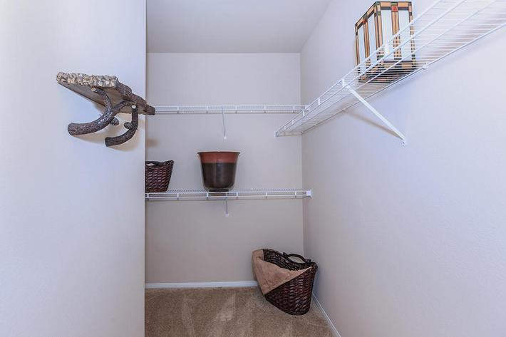 Walk-in Closets in Homes at The Preserve Apartments