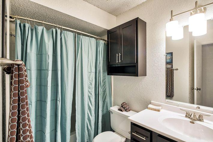 Bathroom_175-N-LOCUST-HILL-DR-LEXINGTON-KY_RAINTREE-Apts_RPI_II-289660-90.jpg