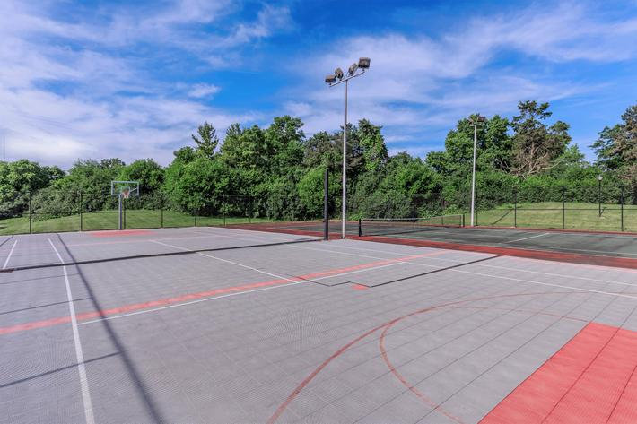 SPORTS COURT FOR HOURS OF FUN