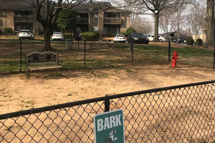 Bring your furry friend down to the bark park at Haywood Pointe in Greenville, South Carolina.