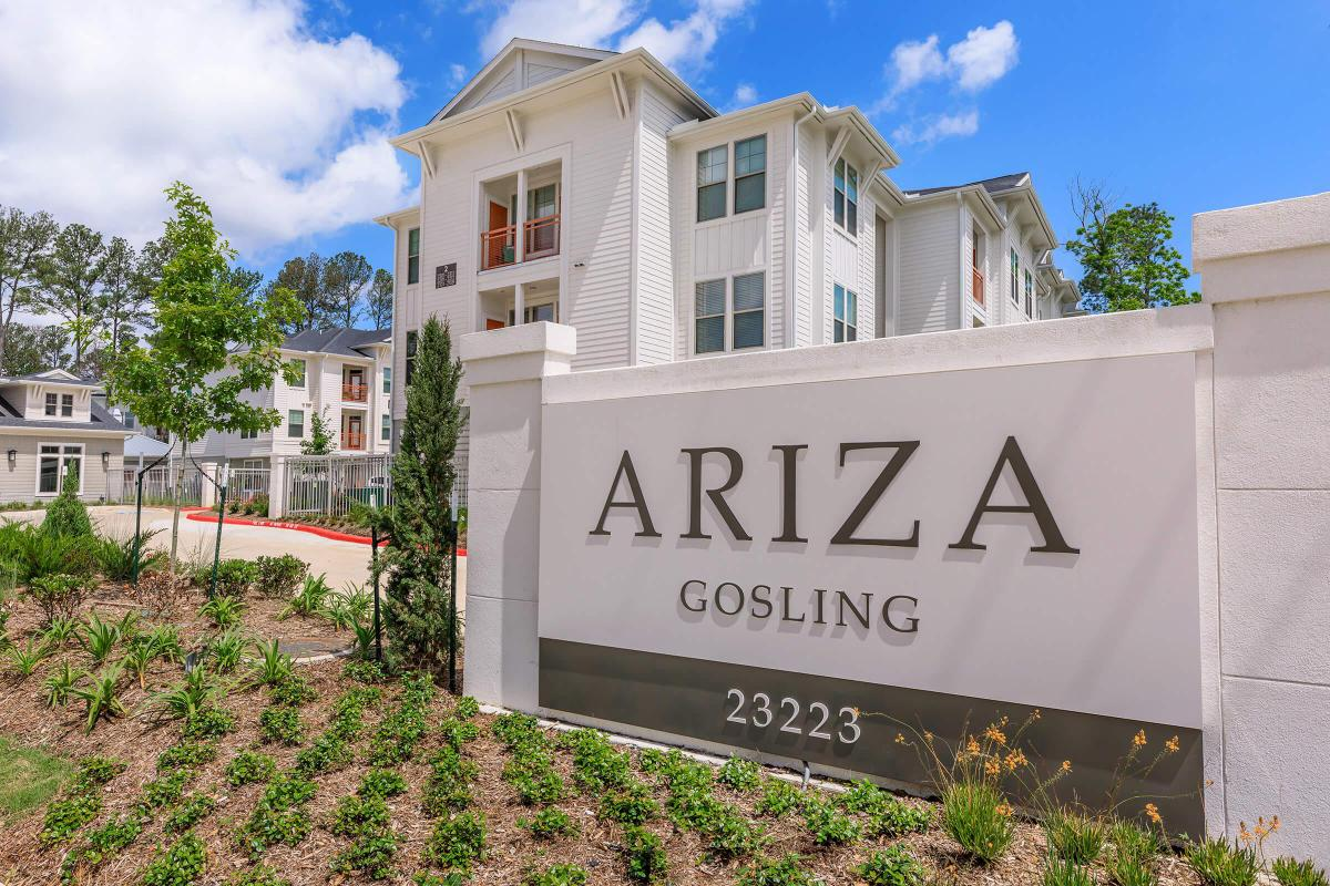 Welcome home to Ariza Gosling in Spring, Texas