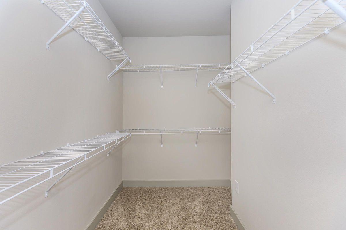 Massive walk-in closets at Ariza Gosling in Spring, TX