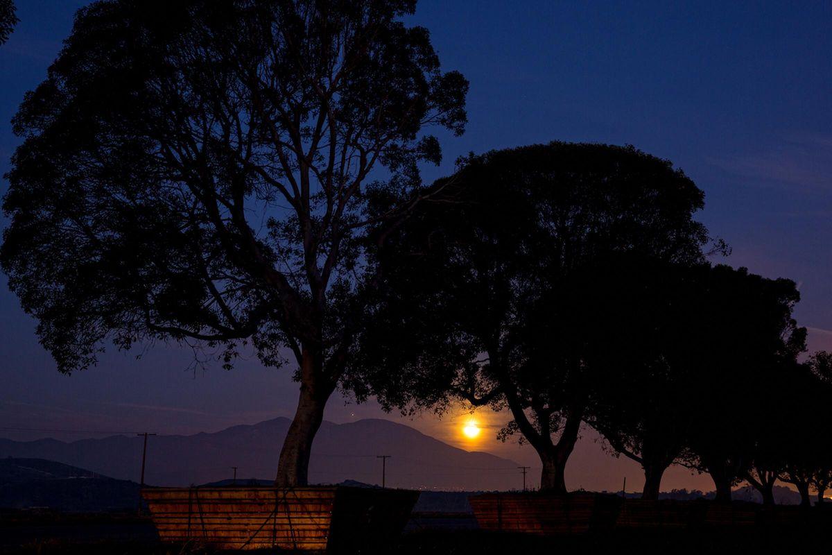 Early Morning Light16x9.jpg