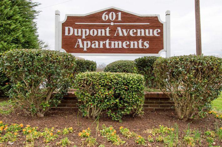 Madison Dupont-44.jpg