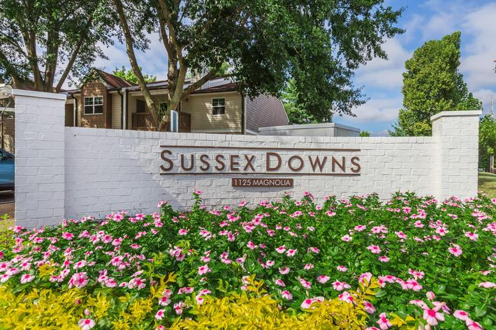 Welcome Home to Sussex Downs in Franklin, Tennessee