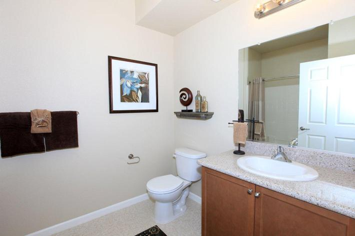 We have a lot of lighting in our bathrooms at Greystone Apartments