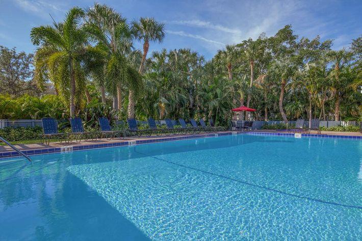 Shimmering swimming pool at Arbor Oaks Apartments in Bradenton, FL.
