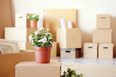 Moving boxes-iStock-488355938.jpg