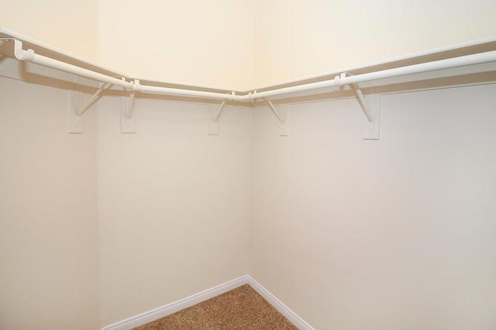 Walk-in closet with carpet at Boca Raton