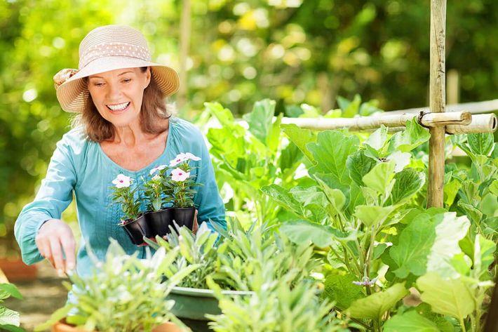 Senior woman gardening.jpg