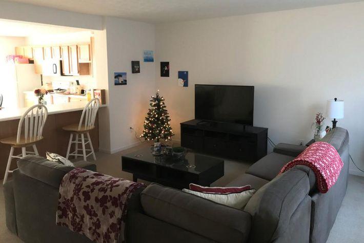 living-room-3-1024x768.jpg