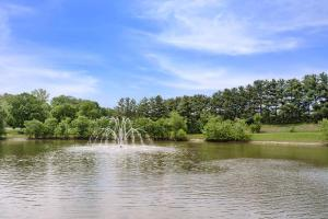 Fishing Pond With Fountain